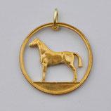 Irland Pferd