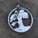 Zimbabwe Baobab