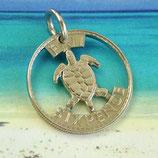 Fiji - kleine Meeresschildkröte