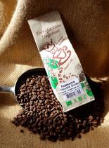 Les Cafés Dagobert - Papouasie Nouvelle Guinée