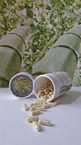 Bambus Silicium