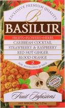 Assorted Fruit Infusion II 20-er BASILUR