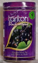 Black Currant TARLTON