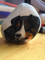 Hond van steen