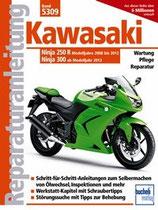 Kawasaki Ninja 250 R (2008-2012) 300 (ab 2013)