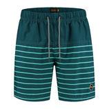 Pappagallo stripe swim short