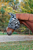 Fliegenschutzmaske Zebra mit Ohrenschutz