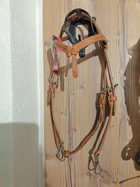 Trainer´s Headstall