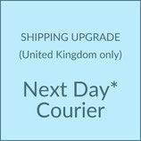 NEXT DAY COURIER