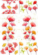A1 Transfer Peaceful Poppies