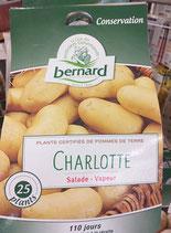 PDT CHARLOTTE 25/32 CHROMOS 25 PLANS