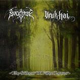 Black Jade/Uruk Hai Split CD - The Sadness Of Fallen Leaves
