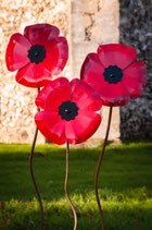 Red metal poppy