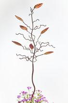 Birdfeeder tree gift vouchers