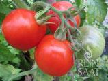Salatparadeiser Kremser Perle