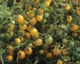 Wildparadeiser Gelbe Johannisbeere