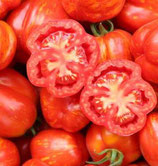 Salatparadeiser Red Cavern / ausverkauft