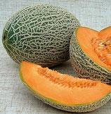 Zuckermelone Hale's Best Jumbo