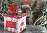 """Explosionsbox """"Weihnachten in den Bergen"""""""