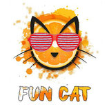 Fun Cat 10ML