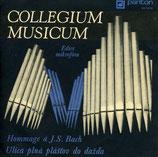 Collegium Musicum – Hommage À J. S. Bach / Ulica Plná Plášťov Do Dažďa