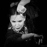 Estrella - Flamenco#10