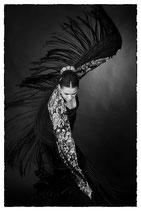Estrella - Flamenco #7