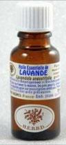 LAVANDE FINE 20 ML