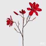 EDG Ramo Magnolia Rosso