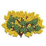 Seletti Sottopentola Florigraphie Mimosa | sconto 10%