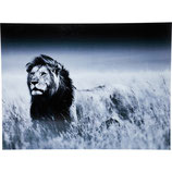 Kare Design | Quadro Lion King Standing