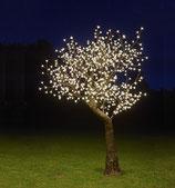 Apple tree Led