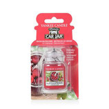 Yankee Candle Red Raspberry | Car Jar Ultimate