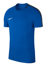 Nike Academy T-Shirt royal