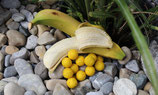 Secret Banana Range