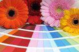 Gutschein Farbberatung