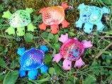 Schildkröte mini, glitzerig