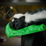 Reality Skunk