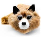 Fox Raccoon