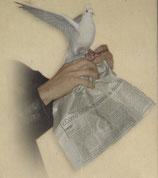 One Dove Bag Scratch