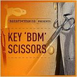 Key BDM Scissors