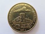 Médaille MDP Valleraugue 2007