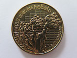 Médaille MDP Jaunay Clan. Parc du Futuroscope. Danse avec les robots 2013