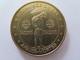 Médaille MDP Aigues-Mortes. Salins. Ecomusée du sel 2010