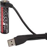 Li-Ion Akku 18650-3400mAH mit Micro USB Ladebuchse