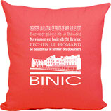 COUSSIN BINIC