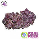 Real Reef Rock - Mix box4th gen 25 / 28 kg