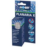 HOBBY PLANARIA X - Planariaval