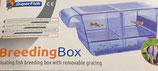superfish floating breeder box