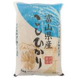 Toyama Koshihikari Reis 5kg 富山県産こしひかり 5kg